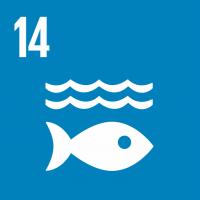 Goal 14 Life Below Water